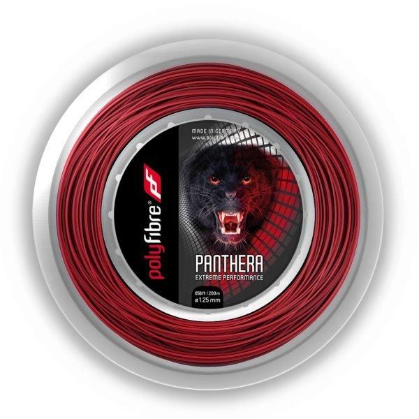 Panthera Rolle
