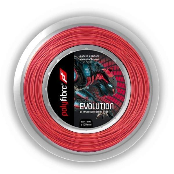 Evolution Rolle